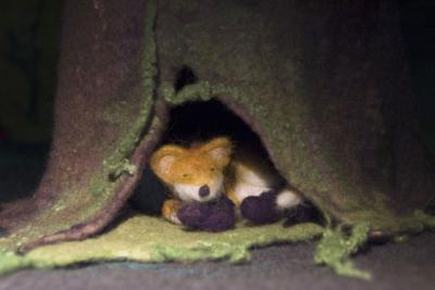 A fox made of felt in one of our homemade animations
