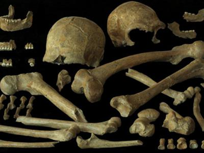 Human remnants found at the Spy Cave (Belgium) in 1886.