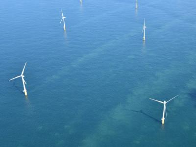 Aerial view on Belgian offshore wind farm. (Image: RBINS)