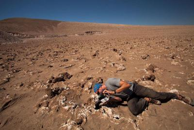 Alpheid at work in the desert of Chile. (photo: P. Sobron / SETI NAI Andes 2016 Expedition)