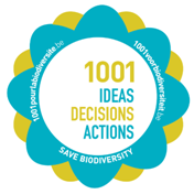 1001 Ideas and Decisions