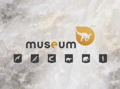 Our Natural Selection: short animation videos tell the story of six must-see exhibits in our Museum. (Image: RBINS)