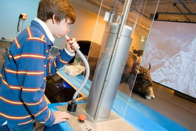 Exhibit showing how much oxygen you consume, and measuring your own lung capacity
