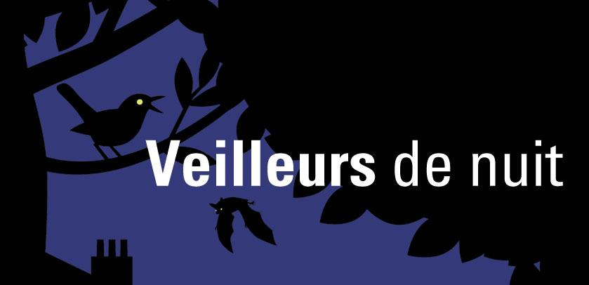 Visual of Nocturnal Animals (Veilleurs de nuit): a bird singing in the night