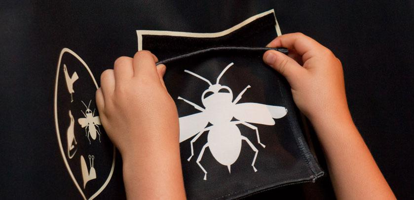 Drawing of a nocturnal insect